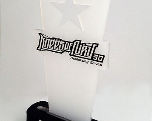 grawerowana-laserowo-nagroda-c9c